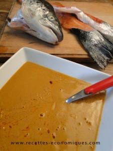 soupe de poissons tm31