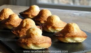 madeleines parfaites (3)